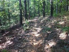 Bare Hare Trail