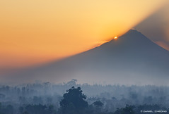 Mount Merapi Sunrise (DanielKHC) Tags: trees light sun mist fog sunrise indonesia volcano 1 java nikon mount explore yogyakarta jogjakarta borobudur merapi d300 gunungmerapi danielkhc nikkor70200mmf28vrii
