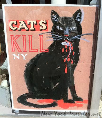 OpenStudio_Catskill