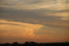 081911 - Building Supercell in North Central Kansas (NebraskaSC Photography) Tags: sky storm nature weather clouds training warning landscape photography nebraska day extreme watch chase tormenta thunderstorm cloudscape stormcloud orage darkclouds darksky thunderhead severeweather stormchasing wx stormchasers darkskies chasers reports thunderheads stormscape skywarn stormchase awesomenature southcentralnebraska stormydays newx weatherphotography daystorm weatherphotos skytheme weatherphoto stormpics cloudsday weatherspotter nebraskathunderstorms skychasers weatherteam dalekaminski nebraskasc nebraskastormchase trainedspotter cloudsofstorms