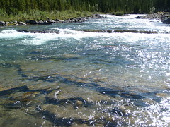 Clear Mountain Waters at Elbow River Falls (Mr. Happy Face - Peace :)) Tags: canada nature water beautiful rockies parks h2o alberta rivers creeks steams