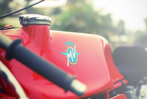 Agusta MV. by southcount