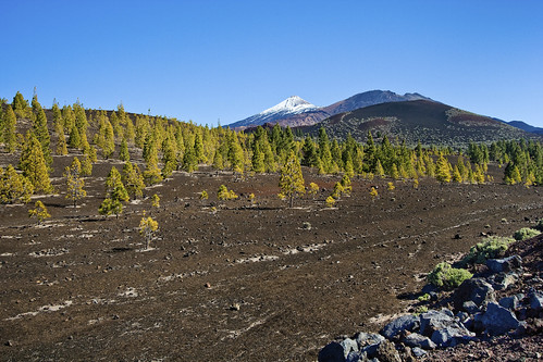 El Teide dressed in a snow cap by Fotosia