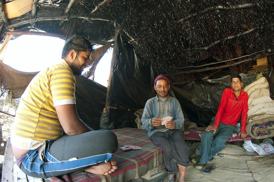 Мототрип по Уттарканду.Часть вторая - Окхимат-Чопта