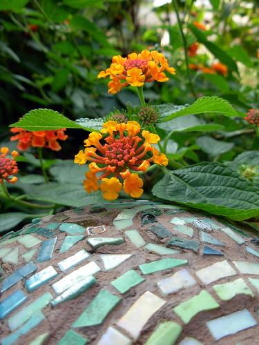 Orange Lantana Flowers and Mosaic Bowling Ball