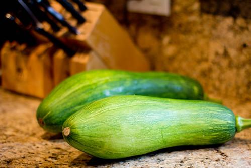 Massive zucchinis