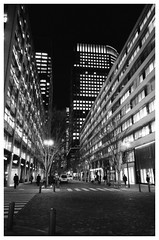 Valley of the buildings. (Delytayan Third) Tags: bw japan night tokyo
