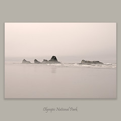 Ruby Beach #0496 (alexander.garin) Tags: seascape washington rubybeach olympicnationalpark bestcapturesaoi elitegalleryaoi