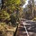 Daisen road