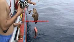 20100617 (fymac@live.com) Tags: mackerel fishing redsnapper shimano pancing angling daiwa tenggiri sarawaktourism sarawakfishing malaysiafishing borneotour malaysiaangling jiggingmaster