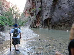 DSC00149 (johnspoelder) Tags: zion narrows