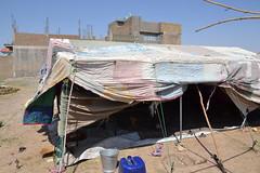 Nawabad 21-08-2100 043 (drs.sarajevo) Tags: afghanistan refugees idps returnees deportees heratcity ferqhaarea