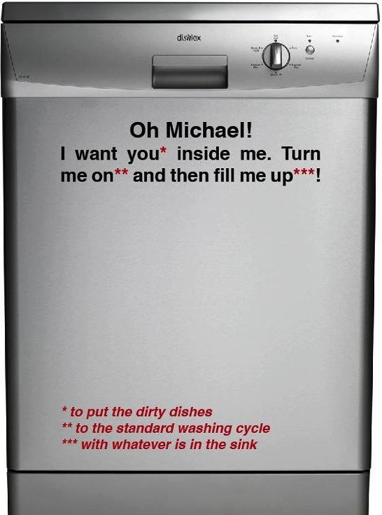 Oh Michael! I want you* inside me. Turn me on** and then fill me up***! *to put the dirty dishes **to the standard washing cycle ***with whatever is in the sink