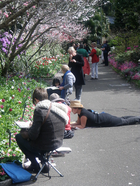 sketchers in the Royal Botanic Garden