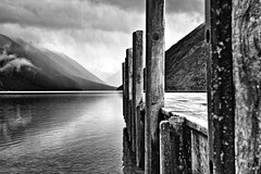 Quay BW (Tim Bow Photography) Tags: wood shadow newzealand blackandwhite bw lake colour reflection water landscape pier dramatic nelson symmetry quay nz british welsh drama nelsonlakes shutterbug svenska psdtuts newzealandgeographic timboss81 timbowphotography