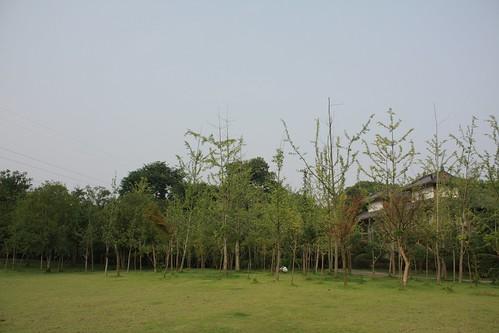 大陸兩廣之旅_2011.07.20_11