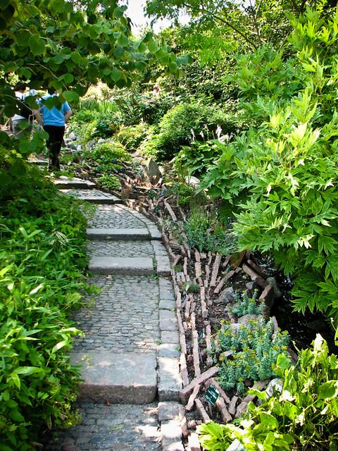 Ботанический сад в Копенгагене