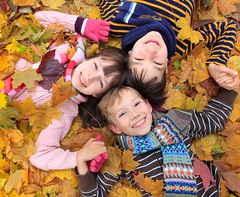 Children in autumn leaves (gmd pix) Tags: wood family autumn friends brown playing fall nature boys girl smile leaves smiling closeup kids female children fun outside outdoors happy golden togetherness countryside clothing warm play brothers outdoor sister hats poland happiness ground siblings covered males cheerful lying leafy playful enjoying enjoyment autumnal kiddies younger youngsters caucasian scarfs
