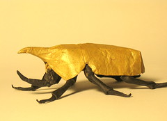 Eastern Hercules Beetle (philiporigami) Tags: insect origami beetle eastern herculese tityus origamido dynastes