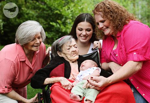 5 Generations 459