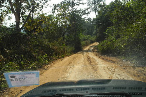 Um Phang : The road to Thi Lo Su Waterfall