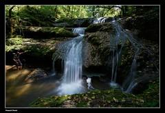 Guy et la cascade supérieure de l'audeux ou de la Grace Dieu (francky25) Tags: guy les de la grace ou tamron et cascade dieu doubs comté franche chaux supérieur nd8 1024mm laudeux passavants