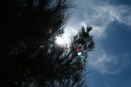 8.21 - Hot Bright Sun