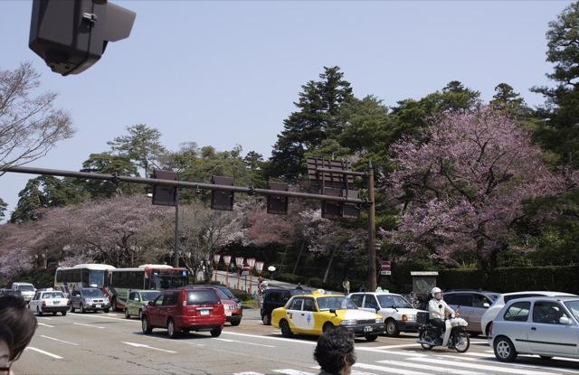 春はひと足ずつ 4月10日 金沢市街地の桜