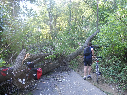 Irene Makes a Mess on the Trail