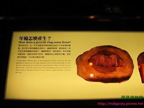 蘭陽博物館-IMG_1924P