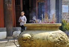 38_LAO74530062 (TC Yuen) Tags: vietnam sapa hmong terracefarming locai