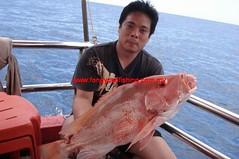 20100818 (fymac@live.com) Tags: mackerel fishing redsnapper shimano pancing angling daiwa tenggiri sarawaktourism sarawakfishing malaysiafishing borneotour malaysiaangling jiggingmaster