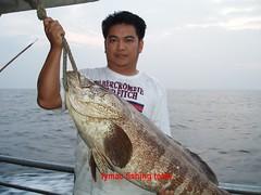 20090829 (fymac@live.com) Tags: mackerel fishing redsnapper shimano pancing angling daiwa tenggiri sarawaktourism sarawakfishing malaysiafishing borneotour malaysiaangling jiggingmaster