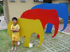 Kuala Gandah Elephant Sanctuary - Ryan