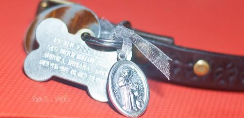 St Francis charm