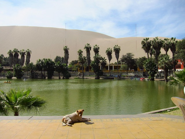 Lake Huacachina