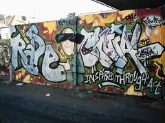RASE CNIAL (SMOKING-TREES) Tags: ita krs rase cnial