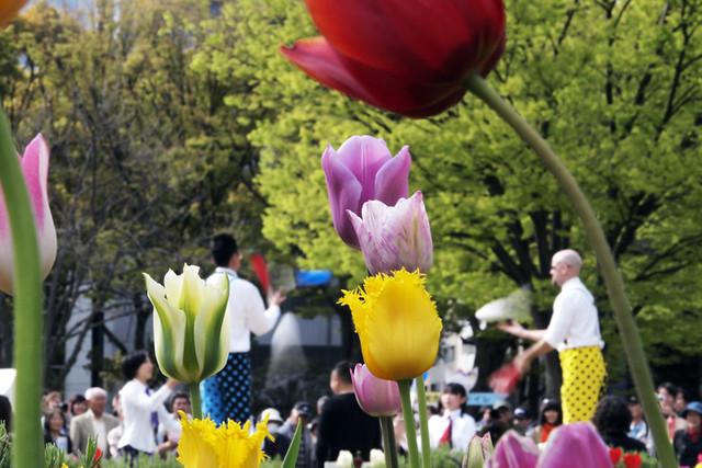 110417_150733_横浜_花と緑のスプリングフェア2011