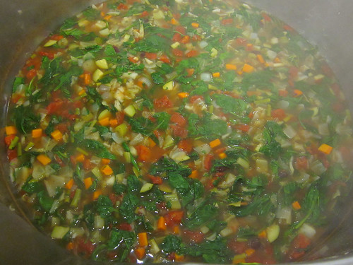 finished minestrone soup