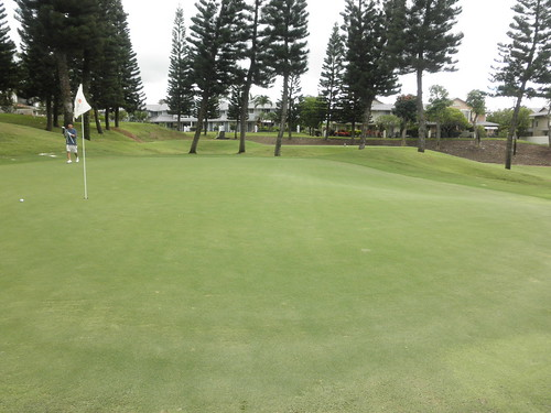 WAIKELE COUNTRY CLUB 051
