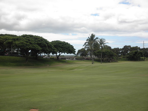 WAIKELE COUNTRY CLUB 184