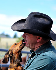 Gary and is pardner! (Chris Sgaraglino) Tags: usa lake monument colorado cattle stan gary longhorn calf branding searle
