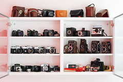 Sunday Cleanup (ukaaa) Tags: camera collection film analog analogue slr tlr vitrine shelf cabinet ikea display wall glass doors leather case strap gordy