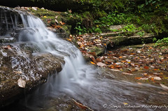 Raven Run (SonyaJohnson) Tags: water waterfall stream bluegrass kentucky fujifilm sanctuary ravenrun fayettecounty x100 mygearandme mygearandmepremium mygearandmebronze