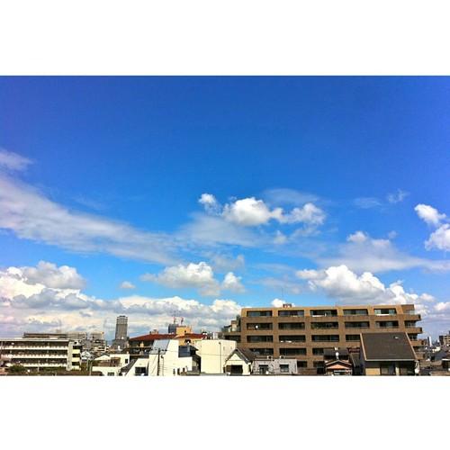 今日の写真 No.378 – 昨日Instagramへ投稿した写真(2枚)/iPhone4+Camera+、HDR Fusion