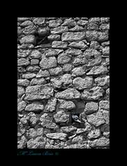 VeCiNaS De PaLoMaR... (Ninfa Nereida...) Tags: madrid bw textura canon pared aves pjaros palomas piedras chinchn desaturado nidos laurabris ninfanereida