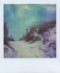 (jeffreywithtwof's) Tags: nyc film beach jeff grass analog polaroid sx70 1 sand path dunes integral instant alpha hutton expired farrockaway timezero breezypoint crossway jeffhutton jeffhuttonphotography jeffreyhutton