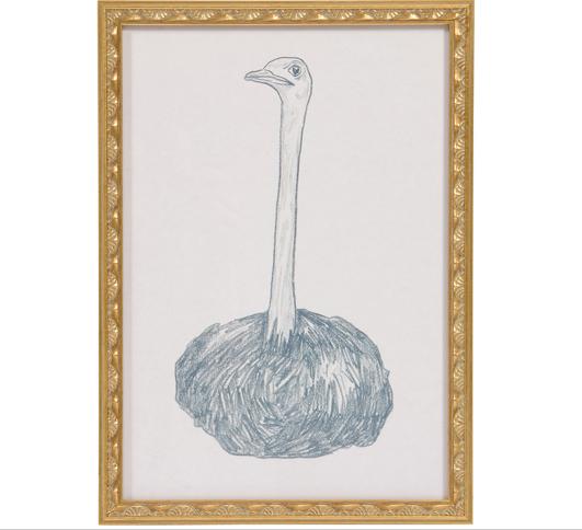 Dave Eggers ostrich