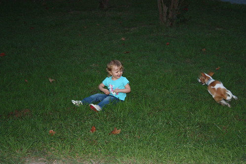 Jrake running circles