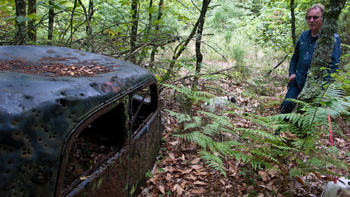 Old car in the woods